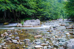 Река Radika Стоковые Фото