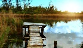 Река reeds мост Стоковые Фото