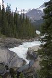 река rockies mistaya Стоковое Фото