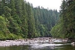 Река Sandy Стоковое Изображение