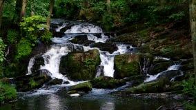 Река Selke водопада акции видеоматериалы