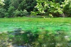 Река Sorgue в Fontaine de Воклюз стоковое изображение rf