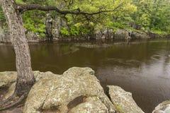 Река St Croix сценарное Стоковая Фотография