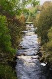 Река Swale, северный Йоркшир Стоковые Фото