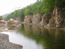 Река Taiga Стоковые Изображения RF
