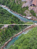 река tara Стоковые Изображения