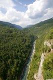 река tara montenegro каньона стоковая фотография rf
