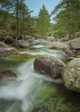 Река Tartagine и Genoese мост Корсика Стоковые Изображения RF