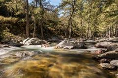Река Tartagine пропускает над красочными камешками в Корсике Стоковые Изображения RF