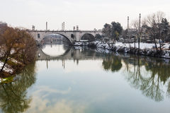 река tiber flaminio моста Стоковое Фото