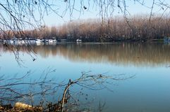 Река Tisa в зиме Стоковое Фото