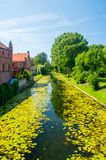 Река Tuja в gdanski Nowy Dwor в Польше Стоковое Фото