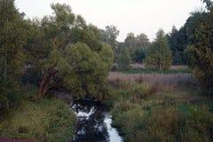 Река Ucha стоковые изображения