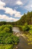 Река Ural в древесине стоковые фотографии rf