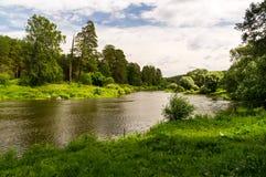 Река Ural в древесине стоковые изображения