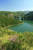 Река Uvac Стоковая Фотография