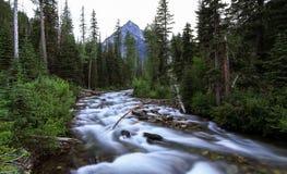 Река Wallowa (западная вилка), Орегон, США Стоковое фото RF
