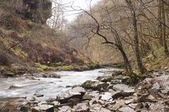 Река Welsh Стоковые Изображения RF