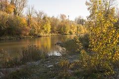 Река Wertach в Аугсбурге Стоковое Изображение