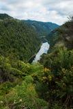 Река Whanganui Стоковая Фотография RF