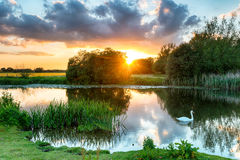 Река Wimborne Стоковое фото RF