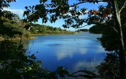 река york Стоковая Фотография RF