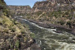 река zambezi Стоковое Изображение RF