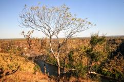 река zambezi gorge стоковое изображение