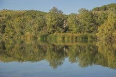 Реки в природе Стоковые Фотографии RF