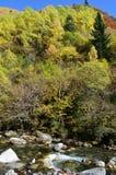 Реки горы в природном парке Posets-Maladeta, испанском языке Пиренеи Стоковые Изображения