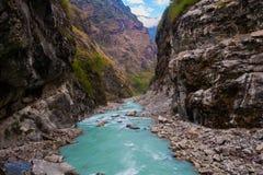 Реки гор ландшафта Гималаи быстрого пешие Предпосылка сезона лета конца водопадов красивого вида Зеленое Threes Стоковое фото RF