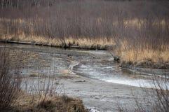 Реки, озера и океаны Аляски & Канады стоковая фотография rf