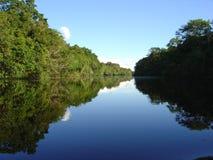реки Перу джунглей Стоковое Изображение RF