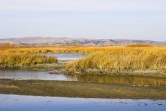 реки прерии озер стоковые изображения rf