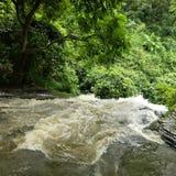 реки Стоковая Фотография RF