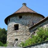 Реконструкция фантазии средневекового дворца в деревне Racos, Трансильвании Стоковые Фотографии RF