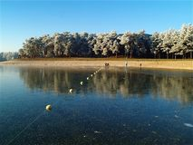 Рекреационное озеро предусматриванное с сияющим, тонким слоем льда Стоковые Изображения RF