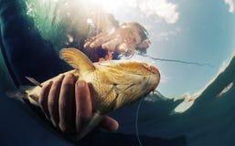 рекламирующ etc удят вектор логоса иллюстрации рыболова славный Стоковые Изображения