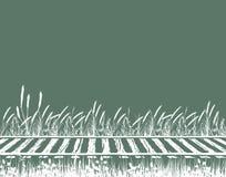 рельсы Стоковое Фото