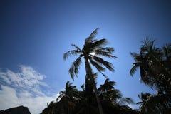 Ремень Ang острова в Таиланде Стоковые Фотографии RF