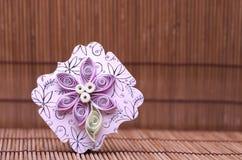 Ремесло Handmade цветка quilling бумажное, хобби практикует Стоковое Изображение