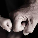 Рему кулачка стоковая фотография rf
