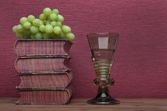 Ренессанс, бокал rummer, старые книги и виноградины стоковое изображение