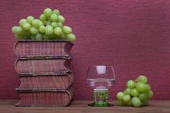 Ренессанс, бокал rummer, старые книги и виноградины стоковое изображение rf