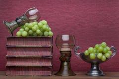 Ренессанс, бокал rummer, старые книги, чашка олова и виноградины стоковое изображение