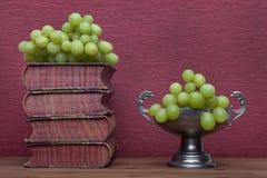 Ренессанс, книги чашки олова старые и виноградины стоковые изображения rf