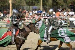 ренессанс удовольствия 8 рыцарей faire jousting Стоковые Фото