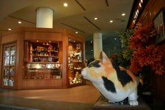 Реплика кота в музее стоковые фотографии rf