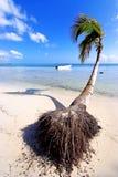 республика punta cana доминиканская Стоковое фото RF