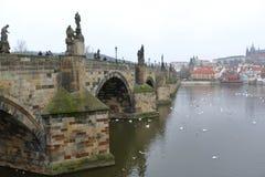 республика charles чехословакская prague моста Стоковые Фото